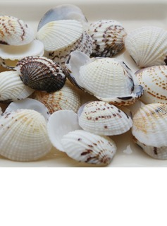 Beach Theme Shell Unique Wedding Décor Set of 4 Packs (40 pieces/Pack)