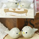 Bird's Nest Ceramic Salt & Pepper Shakers With Ribbons (Set of 2)