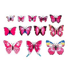 Lovely Butterfly Design PVC Fridge Magnet